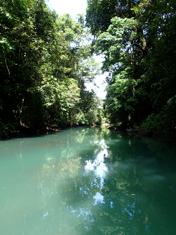 Agujitas River in Drake Bay, Costa Rica